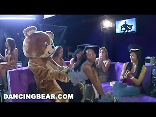Dancing bear starting the party right with big dicks swinging bitches
