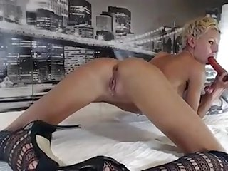 Mycamgirl at www evocams com