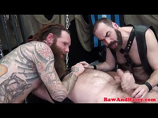 Bearded inked bear barebacked while wanking