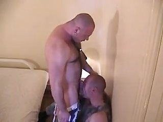Two muscle bulls fuck