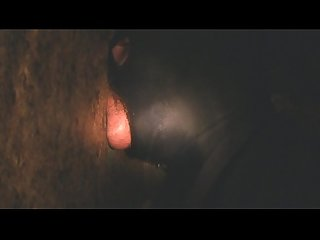 Thick gloryhole cock deepthroat for fun