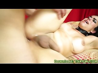 Shemale luana dias roughly fucked bareback