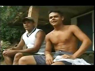 Gay brasil