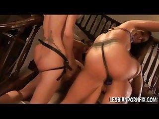 Strapon lesbian Orgy