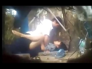 asian couple sex in forest