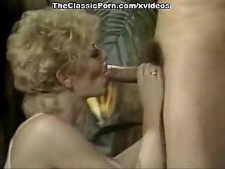 Karen summer comma cara lott comma paul barresi in vintage fuck Video